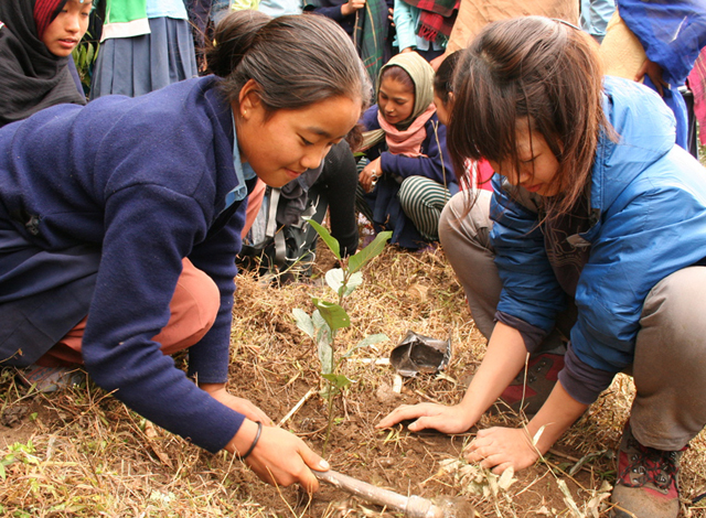 ヒマラヤでの植樹